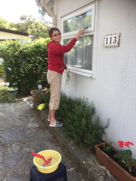 resident window cleaner